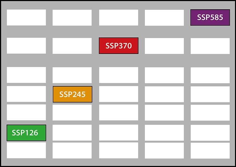 Die SSP-Szenarien